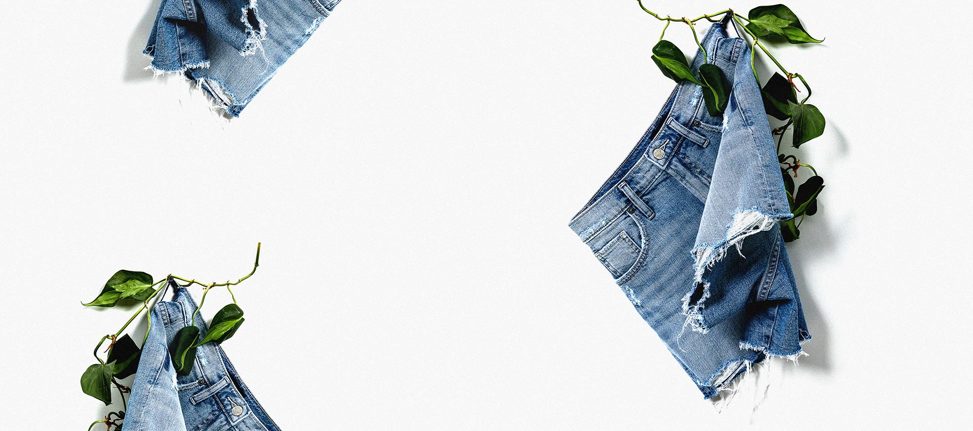 Silver Jeans Co. - Shorts background composition
