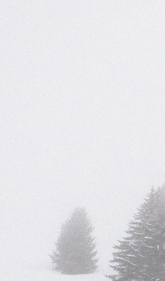 Silver Jeans Co.- Image of a snowy landscape