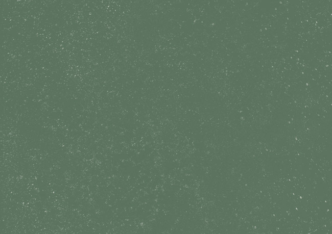 Silver Jeans Co.- Festive green background